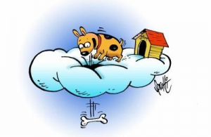 dogs and heaven